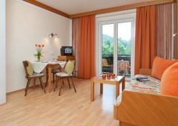Wohnbereich im Apartment Panorama mit Couch und Tisch sowie Fernseher