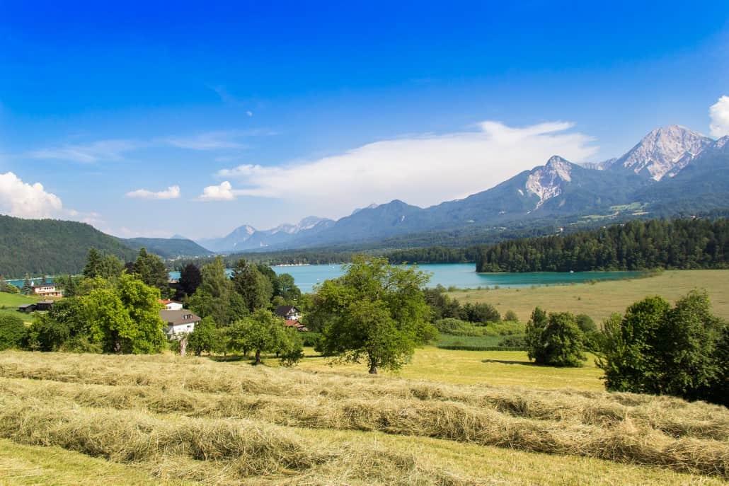 Wiese mit frischem Heu. Faakersee und im Hintergrund die Karawanken mit Mittagskogel. Blickrichtung Rosental.