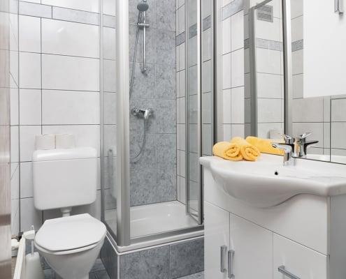 Badezimmer mit Dusche und WC im Apartment Karawankenblick